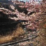 PicsArt_03-03-11.16.06